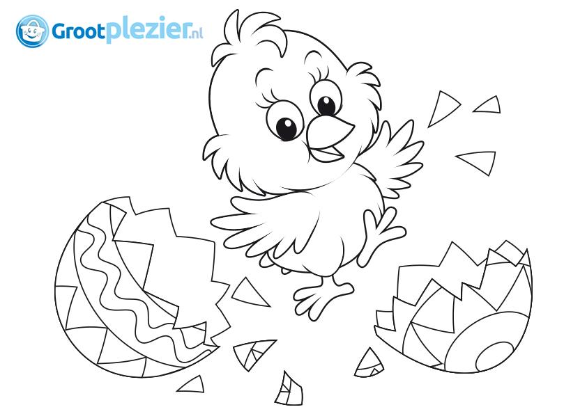 Hühnerstall Co Ausmalbilder Zum Drucken Animalhouseshopde