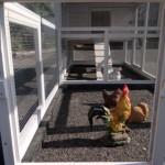 Hühnerstall Kathedral Large mit grossem Auslauf