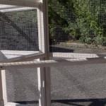 Sitzstang im Auslauf des Hühnerstalls
