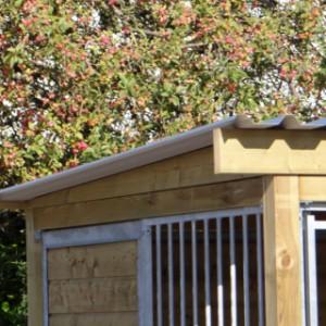 Dach der Hundezwinger