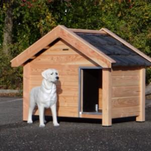 Hundehütte Reno, geëignet für z.B. einen Labrador