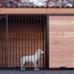Zwinger Hund 3x2 meter