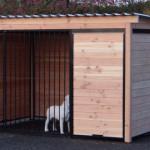 Zwinger Hund 3x2