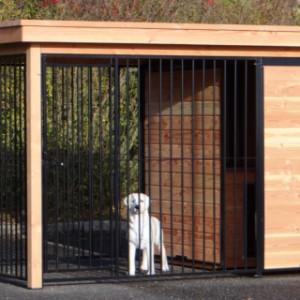 Hundezwinger mit Auslauf von 2x2 m und versehen mit einem isolierten Schlafhaus