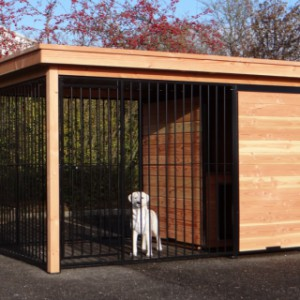 Grosser Hundezwinger Fix mit schwarzen Dach und Douglasienholz Rahmen