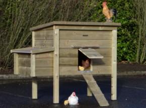 Hühnerstall Chicky aus imprägniertem Holz