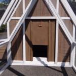 Öffnung zum Auslauf - Hühnerhaus Pip