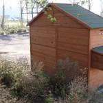 Hühnerhaus mit Legenest