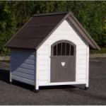 Hundehütte Private 4, aus Holz für Hunde sowie den Border Collie