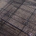 Kaninchenstall oder Auslauf für auf den Rasen