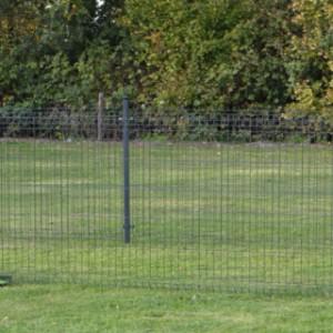 Hühnerauslauf Rectangle Antraciet 5x2,5 M.