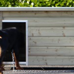 Imprägnierte Hundehütte für Hunde