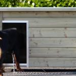 Imprägnierte Hütte für Hund