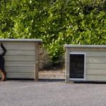 Hundehütte mit flachem Dach