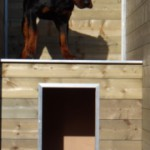 Isolierte Hundehütte Easy 125x100