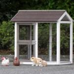 anbau-auslauf hühnerstall