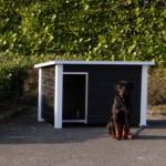 Hundehütte Wolf Schwarz/Weis