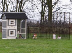 Kaninchenstall Twin mit Auslauf Louis 332x99x134cm