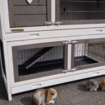 Kaninchenstall Adrian mit Multirun und Nageschutz