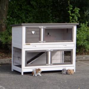 Kaninchenstall Adrian 2 Etagen