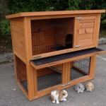 Preiswerter Kaninchenstall Basic