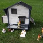 hühnerstall marilene