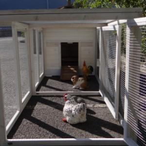 doppel anbau-auslauf hühnerstall