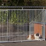 Grosser Zwinger mit isolierter Hundehütte