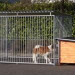 Hundeauslauf FLINQ mit Dach und isolierter Hundehütte
