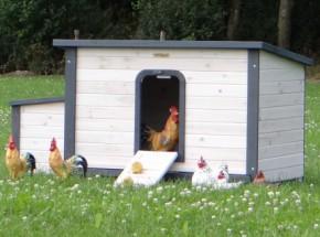 Hühnerställe Eva
