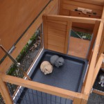 Kaninchenstall Maurice mit 2 zusätzlichen Außenbereichen