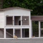 Kaninchenstall mit anbau-auslauf