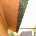 Dach mit dachpappe Hühnerstall Prestige
