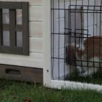 Kaninchenstall mit schublade