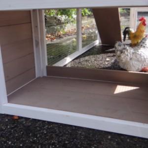 Hühnerstall Leah mit legenest und auslauf