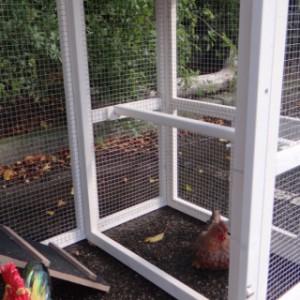 Sitzstang Hühnerstall