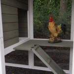 Laufplanke hühnerstall