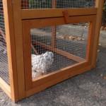 Kaninchenstall mit extra öffnung für anbau-auslauf