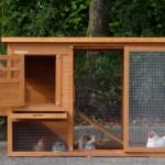 Kaninchenstall Budget