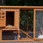 Praktisch kaninchenstall mit große türen