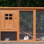 Große kaninchenstall mit auslauf