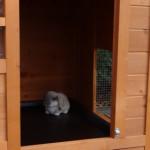 Schlafteil kaninchenstall Julia