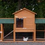 Hühnerstall Prestige mit 2 auslauf-modulen