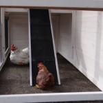 Hühnerstall Holiday Medium - Auslauf