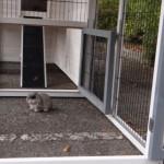 Große auslauf kaninchenstall