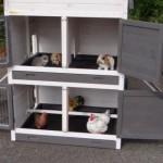 Stall für Hühner und Kaninchen