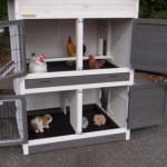 Hühnerstall Kaninchenstall Double Medium