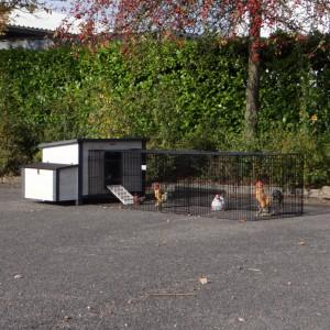 Hühnerställe Eva mit Anbau-Auslauf Jeffrey
