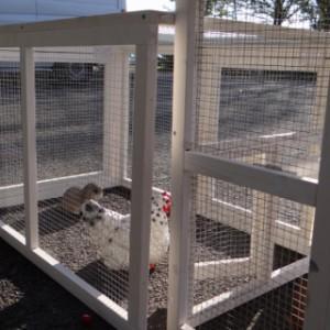 anbau-auslauf hühnerstall Leah