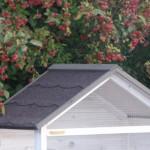 Voliere Sara dach mit dachpappe